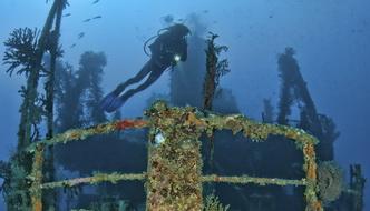 Pacific Gas - Diver
