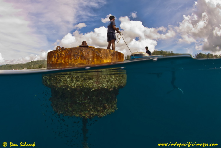 The Ambon Shipwreck is marked by a large mooring buoy