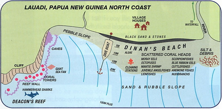 Dinah's Beach - Lauadi Dive Site Map