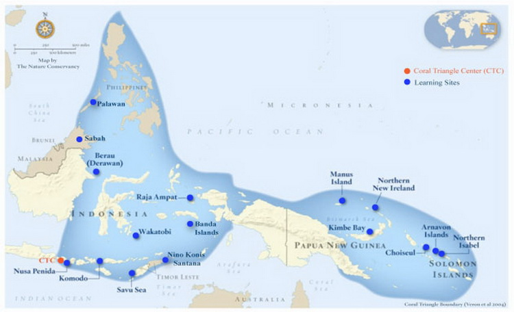 Papua New Guinea's Marine Biodiversity - Map of the Coral Triangle