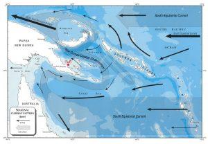 New Guinea Coastal Undercurrent - Scuba diving at Tufi