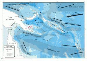 Northwest Monsoon Current - Scuba diving at Tufi