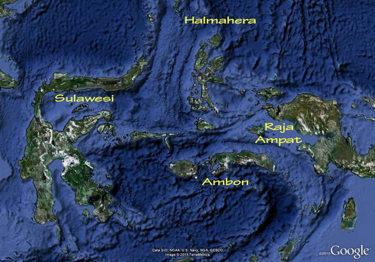 Map of Halmahera province in Indonesia