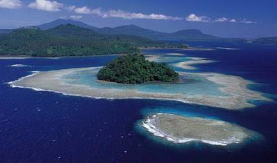 Kimbe Bay's Incredible Biodiversity - Seamounts in Kimbe Bay