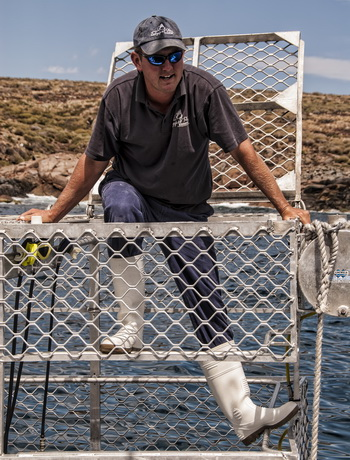 Great White Shark Cage Diving Operators - Andrew Wright