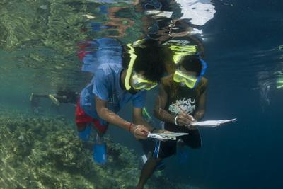 Kimbe Bay Conservation - Mahonia Na Dari learning