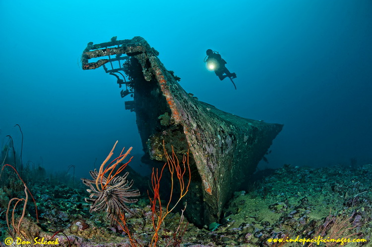 Kavieng Dive Sites – The Der Yang Wreck