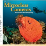 Choosing an underwater housing for mirrorless cameras
