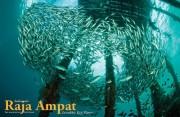 Raja Ampat_XR55