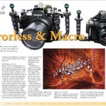 Mirrorless Macro Underwater Photography Part 1