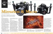 Underwater Photo Equipment: Mirrorless Cameras – Macro Photography Part 1