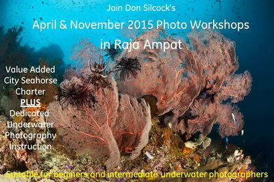 Raja Ampat Photo Workshops