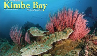 Diving PNG: Kimbe Bay, the Coral Crucible – X-Ray Article