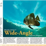 X-Ray Magazine Wide Angle Mirrorless Article