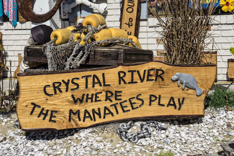Crystal River - home of the Florida Manatee