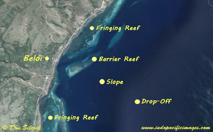 Beloi Dive Site Map