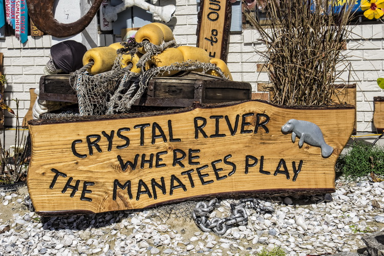 Planning your trip to Crystal River - Crystal River - Where the Manatees Play...