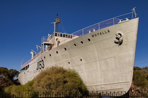 The Complete Guide to the Giant Australian Cuttlefish - HMAS Whyalla