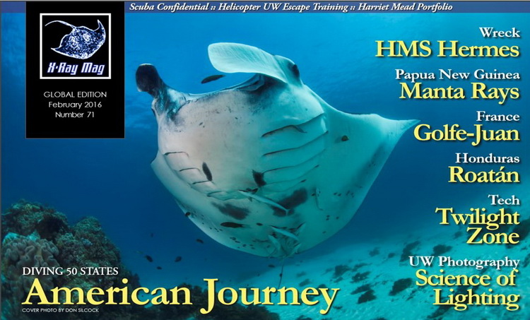 The Manta Rays of Milne Bay in Papua New Guinea - X-Ray Article