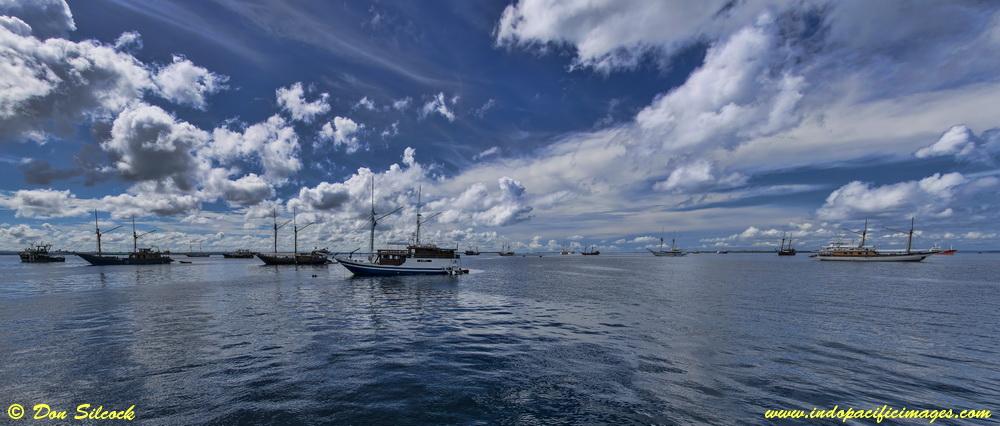 Resort Based Diving in Raja Ampat - Liveaboards in Sorong Harbor